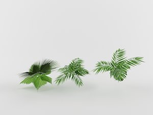 3D shrub bush grass model