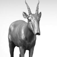 3D saiga antelope