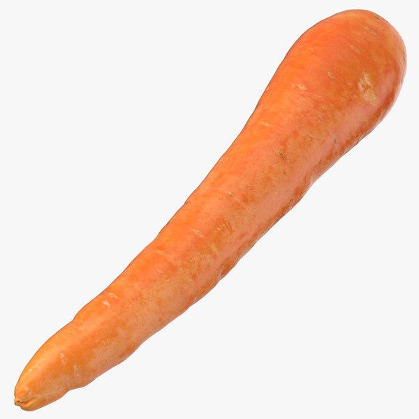 carrot 04 3D model