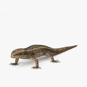 common lizard 3D model