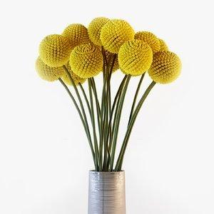 3d craspedia flowers vase