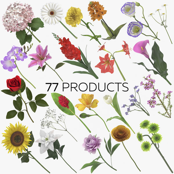 flowers 03 - 77 3D