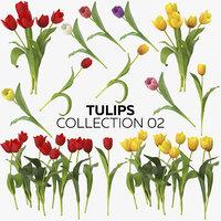tulips 02 3D