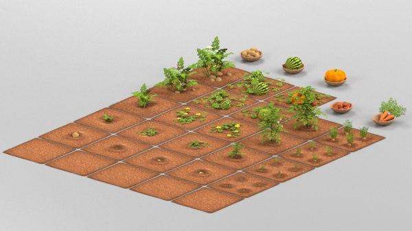 3D farm vegetable