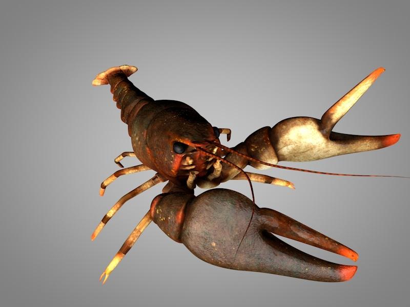 3D model animation