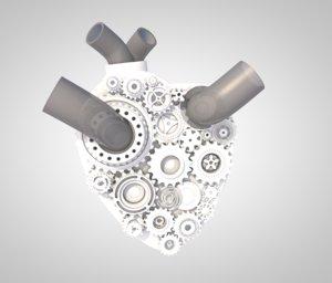 heart science model