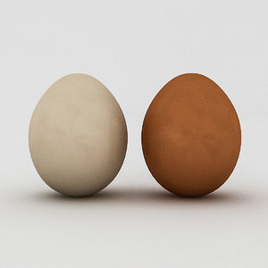white yellow eggs 3D