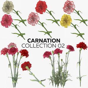 3D carnation 02 model