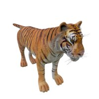 tigre rigged 3D model
