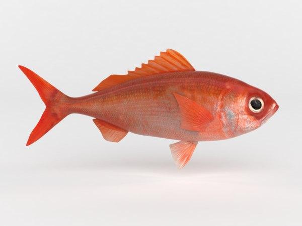 3D model ruby fish