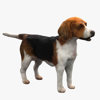 3D dog fur nofur model