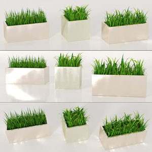3D plant grass pot