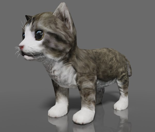 kitten rigged animation model
