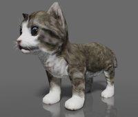 kitten rigged animation model