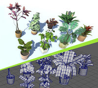 Indoor Potted Plant Lowpoly
