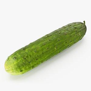 3D cucumber 01 hi model