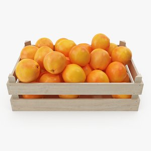grapefruits 01-02 wooden crate 3D model