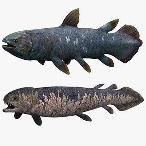 rhizodus coelacanth model