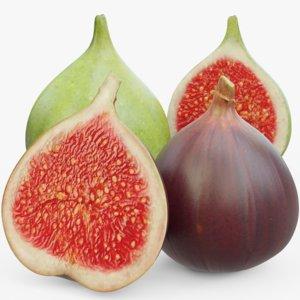 figs uv 3D model