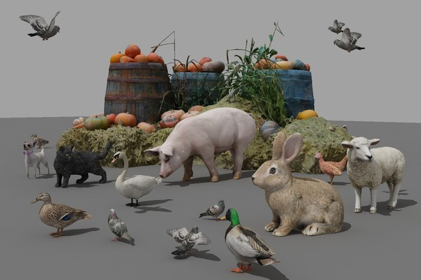 3D poultry animals