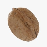 3D walnut nut