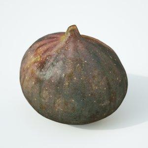 fig fruit model
