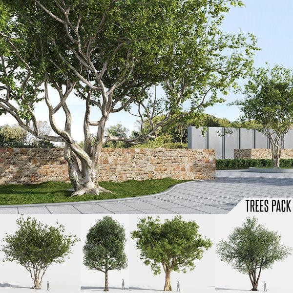 trees pack 4 1 3D model