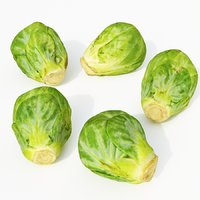 3D model set brussels sprouts