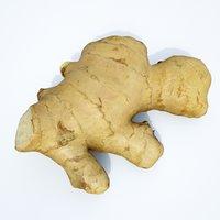 ginger root 3D model