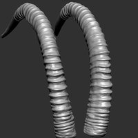 sable antelope horns 3D model