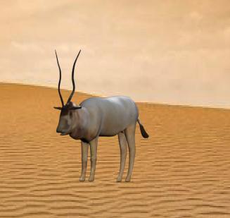 addax wild cow model