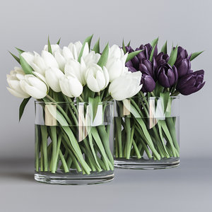 white purple tulips 3D model