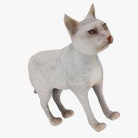 3D white cat
