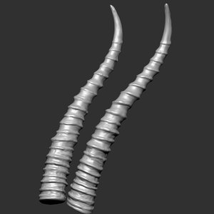 gazelle antelope horns 3 3D model