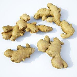3D set ginger roots