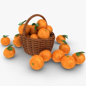 3D realistic grapefruit basket model