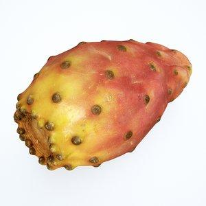 3D prickly pear