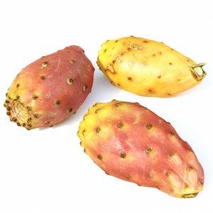 set prickly pears 3D model