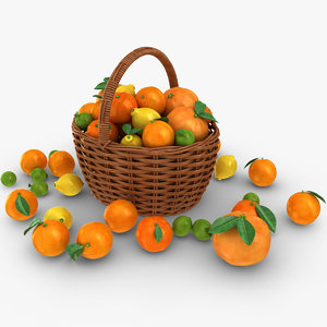 3D model realistic citrus basket