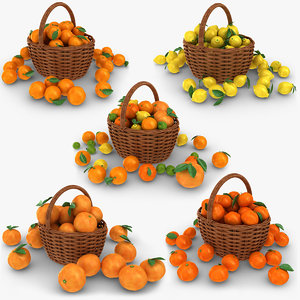 3D model realistic citrus basket