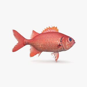 soldierfish pbr 3D