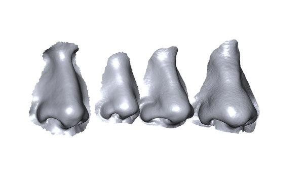 scans noses 3D model