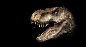 t rex head print 3D model