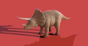 triceratops rigging animation model