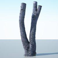 Tree Trunk - 06