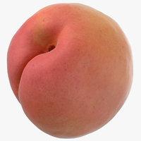 apricot small 01 model