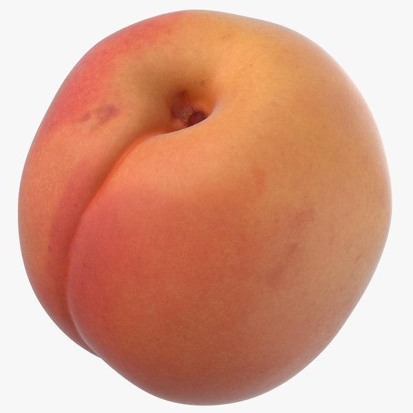 3D apricot small 02 model