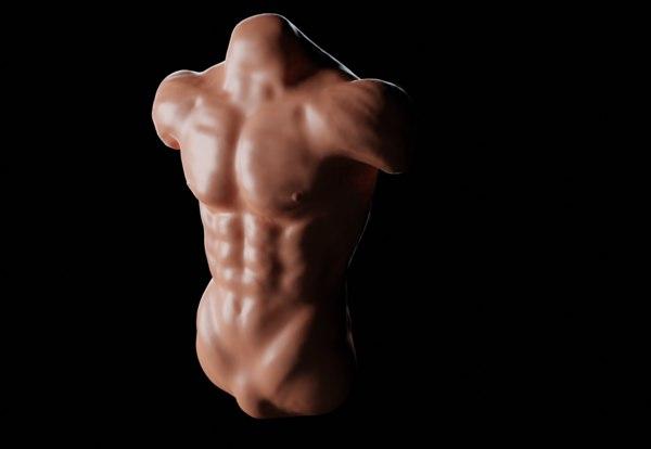 3D human torso model