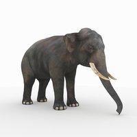 photorealistic elephant 2 3D