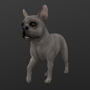 rigged dog walking place model